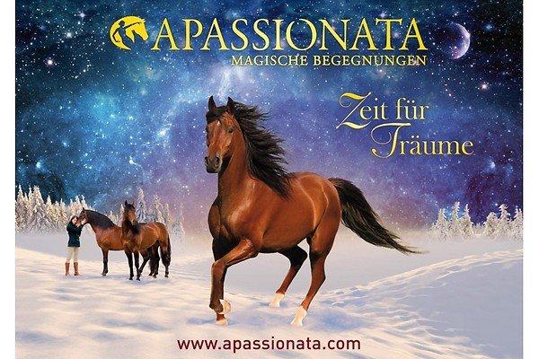 APASSIONATA - 2 Tickets der PK2 zum Preis von einem! am 16.03.2014 in Stuttgart