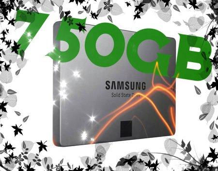 """[mein Herz geht auf] Samsung Solid State Drive 840 EVO 2,5"""" 750 GB 331,03€ über mp.de von alternate"""