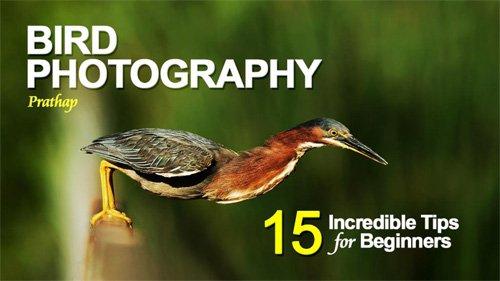 20 freie eBooks für Fotografen