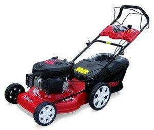 Rotenbach 4in1 Benzin Rasenmäher 5,5 PS mit Radantrieb für 179,90€ inkl. Versand @ Ebay -22%