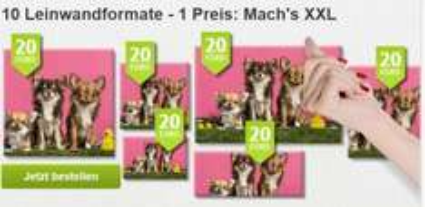 Fotoleinwände -60x40cm, 60x45cm 20€ statt 44,99€ - auch andere Formate günstig