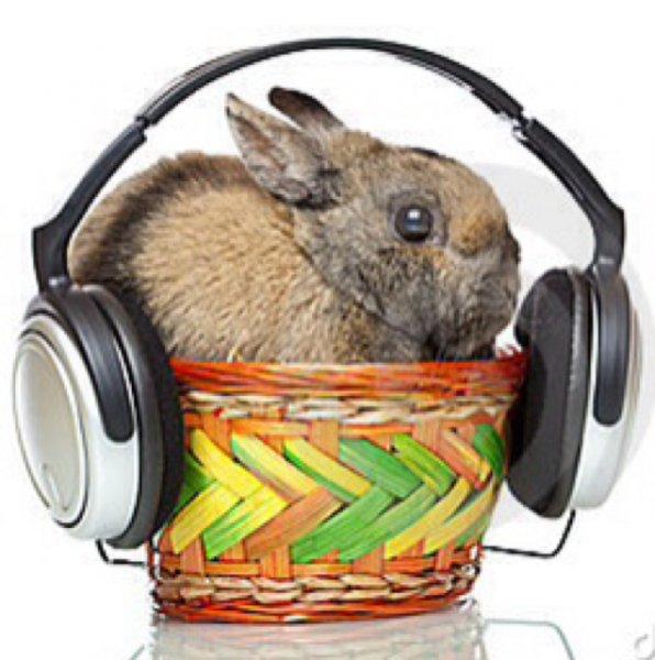 Der Osterhase braucht was auf die Ohren, Oster-Angebote im Audio/HiFi Bereich von notebooksbilliger.de [Bis zu -30% auf Idealo-Preis]