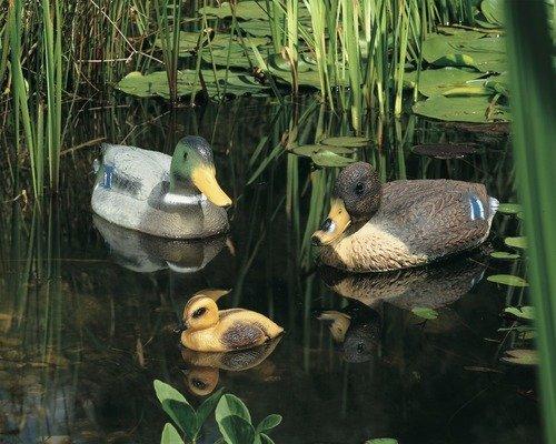 """HORNBACH (offline): """"RAUS DAMIT"""" - Enten für den Gartenteich (keine lebenden ;))"""