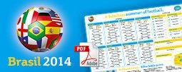 WM 2014 Faltplaner Kostenlos