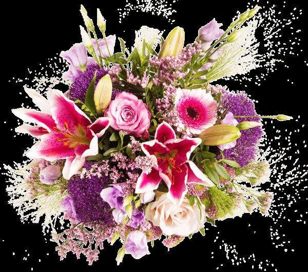 [MIFLORA] Blumenarrangement Lebenslust  (QIPU -2,37€ möglich)