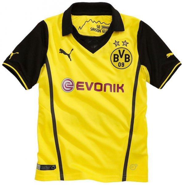 Dortmund Stadtmitte: BVB Champions League Trikot oder Winter Trikot 2013/2014 für maximal 20€ und vieles mehr...