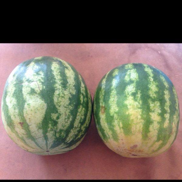 Wassermelone für 1€ das Stück bei Rewe (Braunschweig)