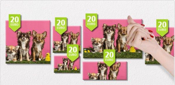 [PosterXXL] 5 Leinwände in verschiedenen Größen für 50€!! Versandkostenfrei. Nur noch heute!