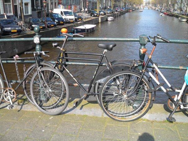 Busreise nach Amsterdam am 14.06.2014 für nur 33 Euro [Lokal Ruhrgebiet, Essen]