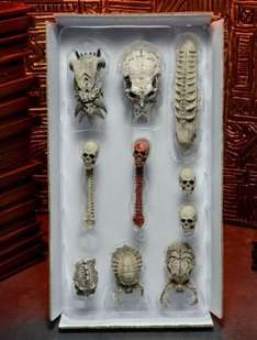 Predators - Trophy Skulls Accessory Pack NECA Ebay usa 26,50€