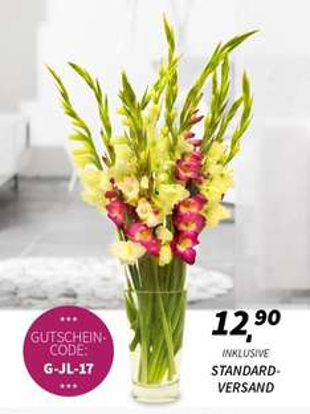 [MIFLORA] Blumenarrangement - Gladiolentraum [Qipu -1,45]