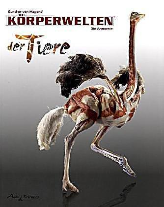 Körperwelten der Tiere in Ludwigsburg - 1 Ticket für 2 Personen für 18,90€ statt 30€ @Groupon