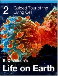 """Apple verschenkt Biologie-Buchreihe """"Life on Earth"""" (iBooks)"""