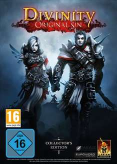 Divinity: Original Sin (Digital Collectors Edition) [Doppelpack]