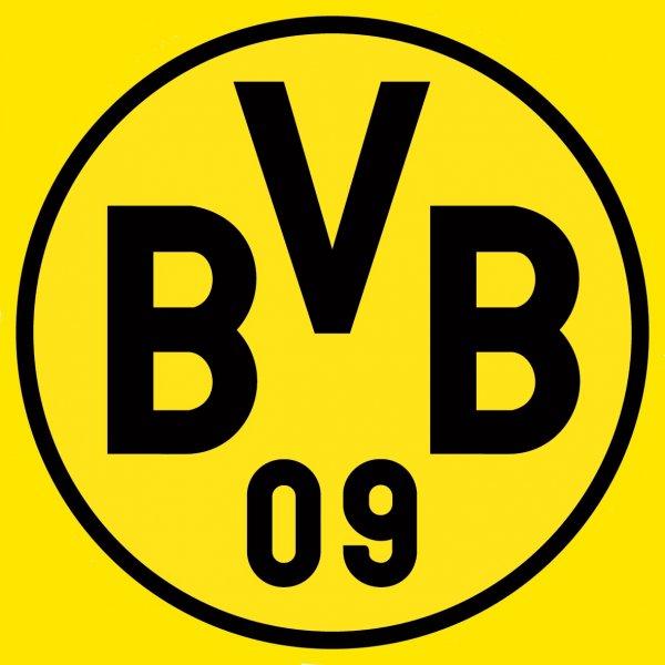 Besonders günstig zum Spiel der U23 des BVB gegen Regensburg am Samstag (z.B. 2€ Stehplatz)
