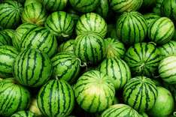 wassermelonen für 39 Cent kg @ Netto