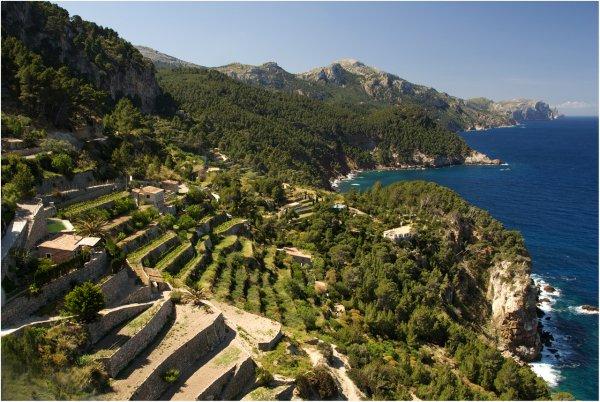 November 2014: Verlängertes Wochenende Mallorca, Apartment, Flug, Mietwagen für 4 Personen ca. 66 € p.P.