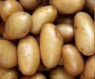 [Freiburg] 10kg-Sack Kartoffeln für 1€ bei real,-