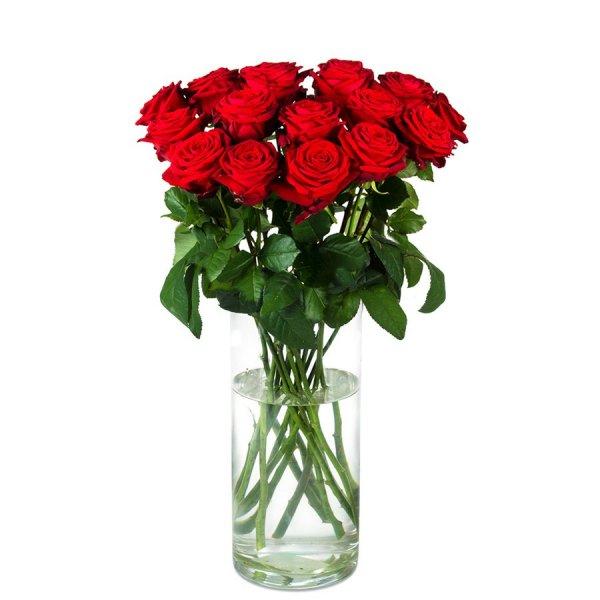 20 rote Rosen für 18,80€inkl. VSK @ Miflora