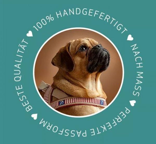 15% auf handgefertigte Hundehalsbänder und - geschirre