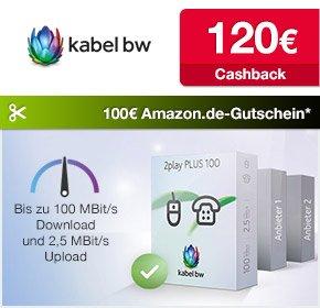 Qipu: KabelBW 120€ Cashback & 100€ Amazon-Gutschein für 100 Mbps Internet- und Telefonflat