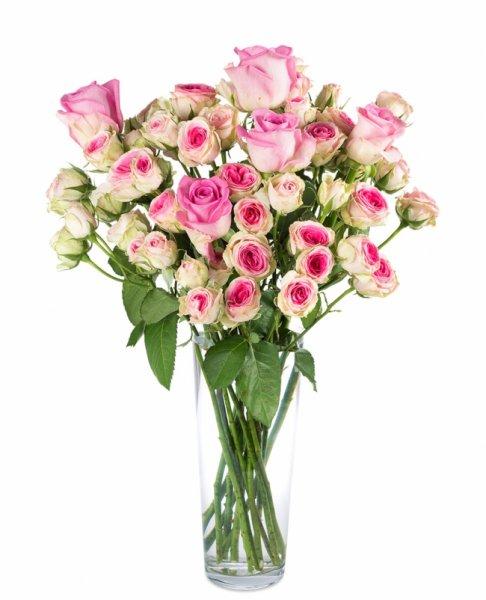Blumenstrauß Eselle für 16,90€ inkl VSK @miflora