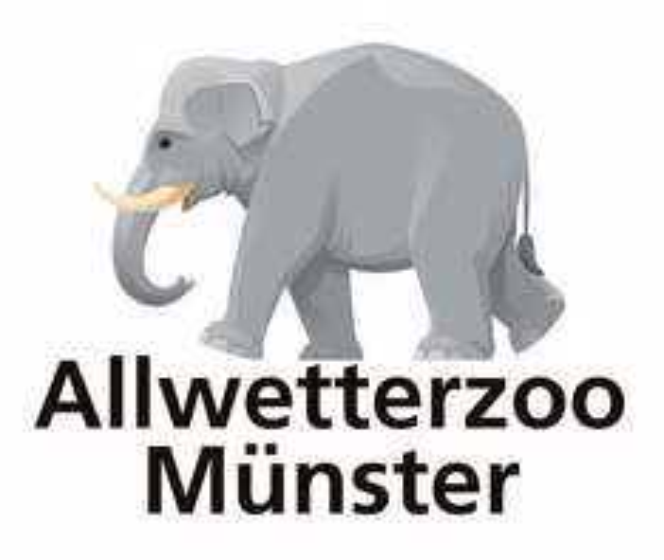 [Allwetterzoo Münster] Berühmter Haiforscher zu Gast im Zoo – Eintritt frei am 9.11.