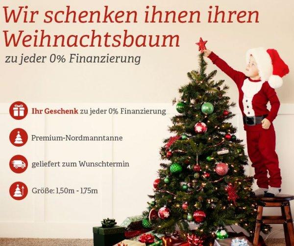 Weihnachtsbaum Gratis bei Nutzung der 0% Finanzierung