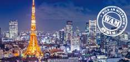 KLM/Airfrance: Günstige Hin- und Rückflüge nach Tokio schon für ca. 450€ [nur heute 17.12. buchbar]