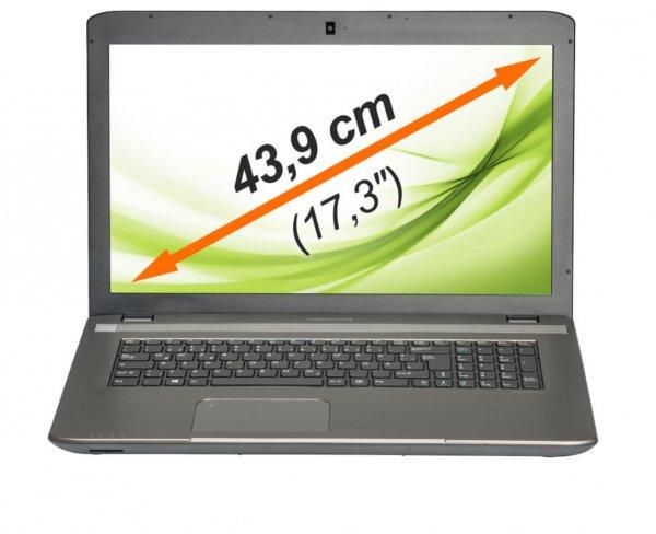 """MEDION AKOYA E7226 MD 99420 Notebook 17,3""""/43,9cm Intel 500GB 4GB Windows 8.1 [B-Ware Ebay]"""