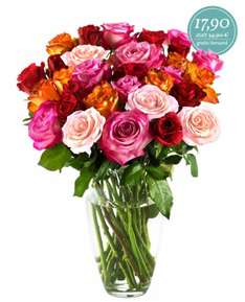 Miflora 30 farbenfrohe Rosen für nur 17,90 Euro inkl. Versand statt 34,90 Euro