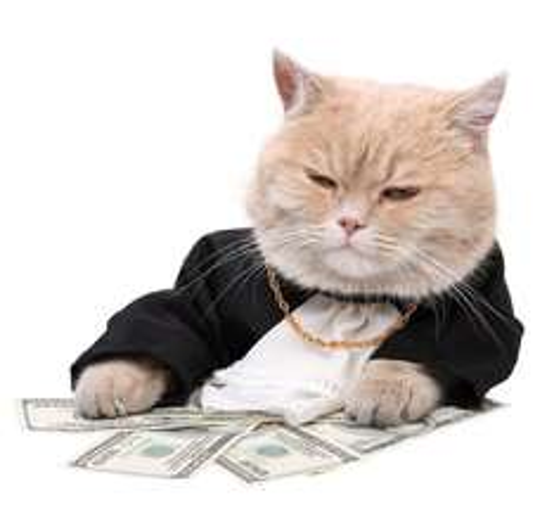Anleitung für Cashback! Geld online verdienen! Update 06.04.2015 - neues Portal hinzu gefügt www.bonicloud.net