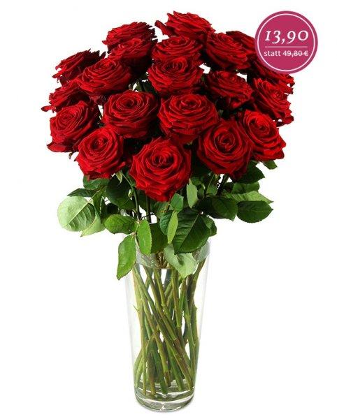 [Miflora] 20 Red Naomi Rosen (60 cm lang) für 19,80 EUR inkl. Versand (+10% Qipu)
