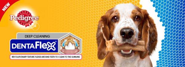 ab 09.04.2015 Netto m. Hund  Pedigree Dentaflex für 0,45€