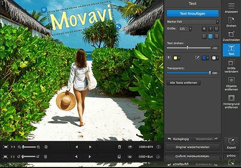Movavi Photo Editor SE - 1 Jahr