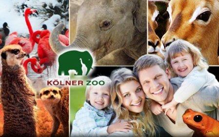 [ Köln ] Zoo Köln für 8,75 € / Person