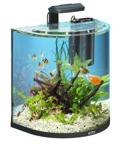 Tetra AquaArt Explorer Line Aquarium Set für 79,99€