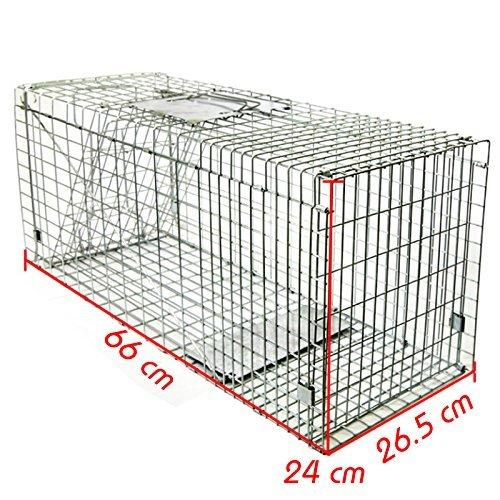 [Amazon] Lebendfalle, Rattenfalle, Katzenfalle, Marderfalle, (65.0) maße : 66×24×26,5cm