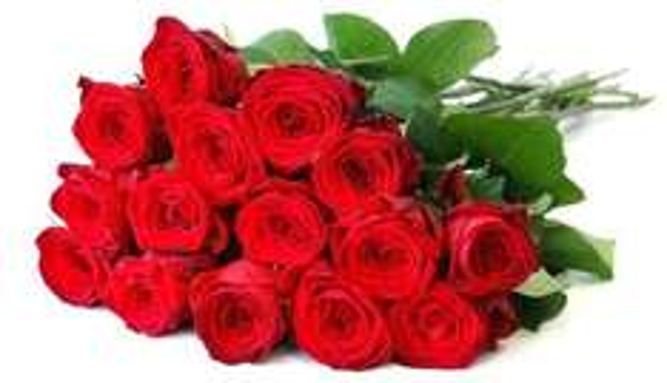 [FloraPrima.de] 20 Rosen für 19,71 EUR inkl. Versand + gratis Vase (+8% Qipu)