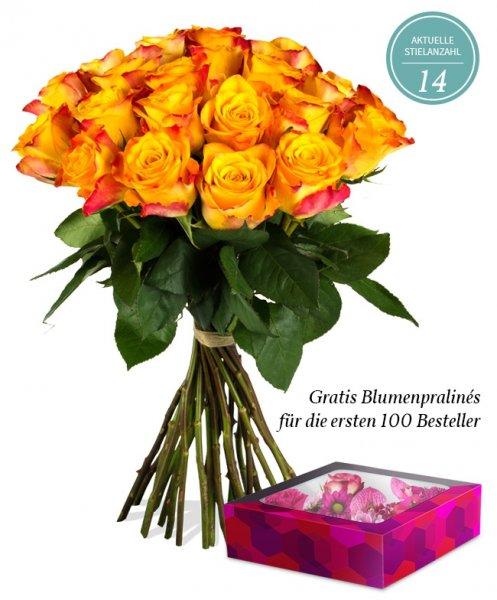 14-22 Orangefarbene Rosen für 18,90€ @ Miflora
