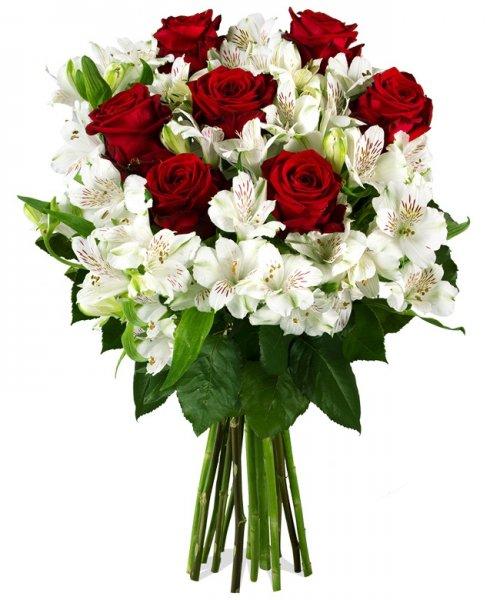 [Miflora] Blumenstrauß Gloria (rote Rosen / Alstromerien) für 12,95 Euro zzgl. 4,95 Euro Versand, qipu möglich