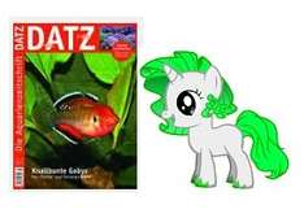 """1x kostenlose Ausgabe """"DATZ"""" (Fisch & Aquarien Magazin / Printvariante)"""