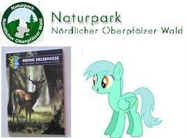"""kostenloses Kinderbuch """"Meine Erlebnisse"""" (Naturpark)"""
