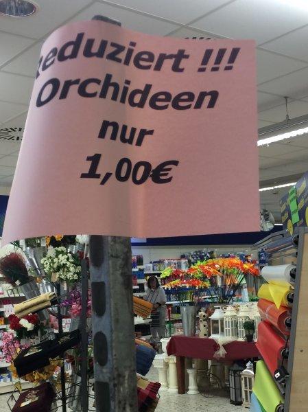(LOKAL Ratingen) Orchideen im Centershop für 1€