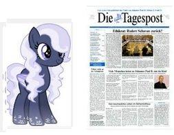 """kostenloses 2wöchiges Mini Abo """"Die Tagespost"""" (Printvariante / selbstkündigend)"""