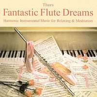 [Saturn] H. Thors - Fantastic Flute Dreams - (CD) [Gratis bei Abholung]