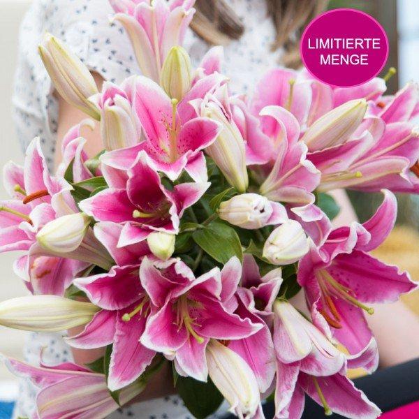 10 Rosa Lilien für 14,89 Euro  (inkl. Versand) Euro bei Blume Ideal