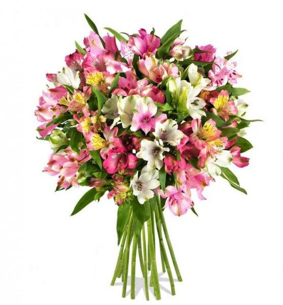 """Blumenstrauß """"Pinkfifties"""" für €8,97 + €4,95 VSK beim Online-Versand Miflora"""