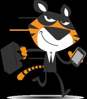 TigerVPN Lite Lifetime subcription für 29 Dollar anstatt 790 Dollar, Ersparnis 96%