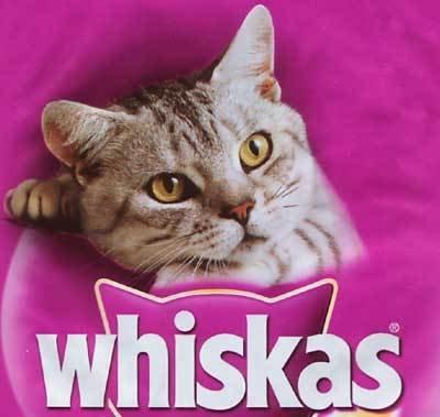 Gratisprobe Whiskas abstauben - Promotionaktion in 19 Städten (7.-15.8.)